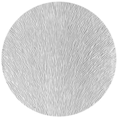 gobo 33611 - Pin Feathers  (33611)