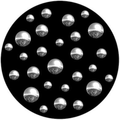 gobo 82216 - Colony(82216)