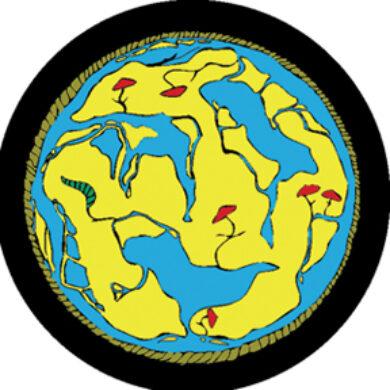 gobo 86609 - World Map(86609)