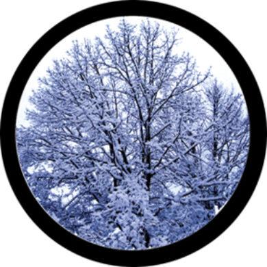 gobo 86684 - Winter Solstice(86684)