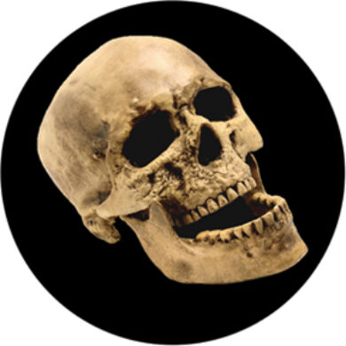 gobo 86686 - Laughting Skull  (86686)