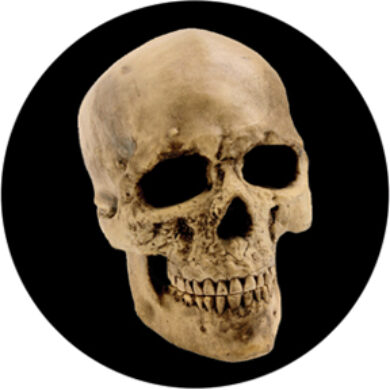gobo 86687 - Yorick Skull(86687)