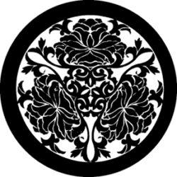 gobo 81172 - Chrzsanthemums